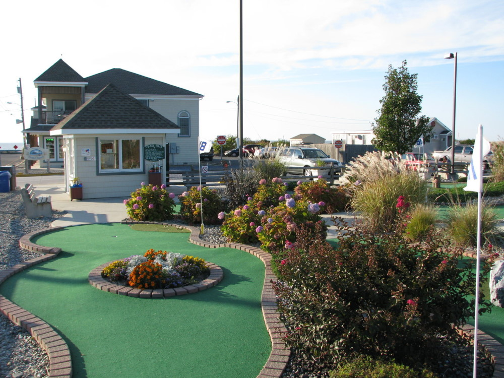 flowers and mini golf course design