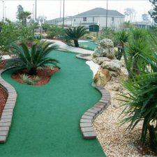 palm tree mini golf course design